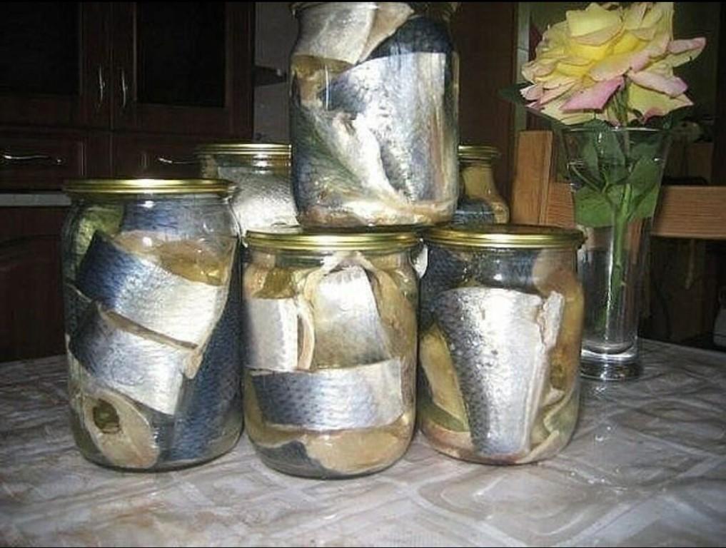 image-29 Удачный рецепт! Наша семья уже давно не покупает соленую скумбрию или селедку в магазине
